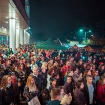 Festivalul Castanelor AccenteNOiFair.ro (20)