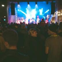 Festivalul Castanelor AccenteNOiFair.ro (21)