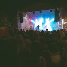 Festivalul Castanelor AccenteNOiFair.ro (38)