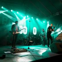 Festivalul Castanelor AccenteNOiFair.ro (5)