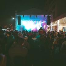 Festivalul Castanelor AccenteNOiFair.ro (7)